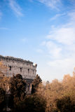 Coliseum. A Coloseum view with spring trees on the surface Stock Images