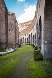 coliseum Στοκ Εικόνες