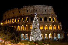 Coliseum and Christmas Tree Stock Images