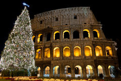 Coliseum and Christmas Tree royalty free stock photos