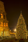 The Coliseum and the Christmas tree in Rome, Italy. The Coliseum and the Christmas tree, night,  Long Exposure, Rome, Italy Royalty Free Stock Image