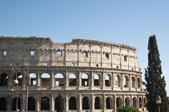 Coliseum during the day Royalty Free Stock Photo