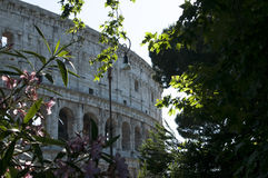 Coliseum during the day Royalty Free Stock Photography