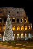 Coliseum en Kerstboom royalty-vrije stock foto's