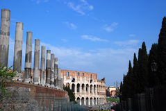 Coliseum and forum royalty free stock photography