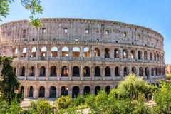 Coliseum in groen, de zomermening, geen mensen, Rome, Italië royalty-vrije stock afbeeldingen