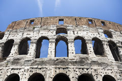 Coliseum, Rome. Royalty Free Stock Images