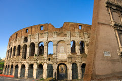 The Coliseum, Rome, Italy. Royalty Free Stock Photo