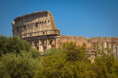 The Coliseum, Rome, Italy. The roman ruins of the Coliseum, Italy Royalty Free Stock Image