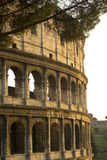 The Coliseum in Rome, Lazio, Italy. Royalty Free Stock Photos