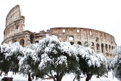 Coliseum with snow, Rome. Royalty Free Stock Photo