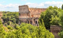 Coliseum terug in een groen milieu in Rome royalty-vrije stock afbeelding