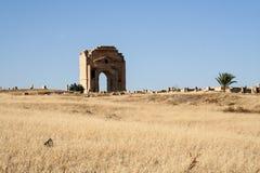 Coliseum Tunesië stock afbeelding