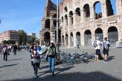 Coliseumen på Rome, Italien Fotografering för Bildbyråer