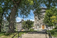Collège De montréal fotografia royalty free