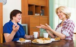 Collègues buvant du thé et causant pendant la pause pour le déjeuner Images libres de droits