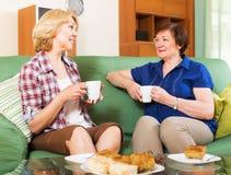 Collègues heureux buvant du thé et parlant pendant la pause pour le déjeuner Photo stock