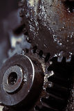 Collaboration of the two gears Stock Image