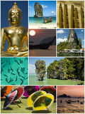 Collage royalty free stock photography