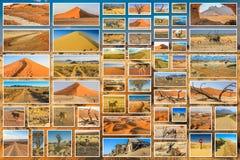 Collage africano del deserto Fotografia Stock Libera da Diritti