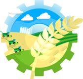 Collage agrícola con el oído, los campos, las cosechadoras, el granero y las balas del trigo de paja libre illustration