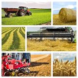 Collage agricole Collection d'images agricoles photographie stock