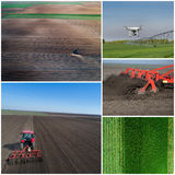 Collage of agricultural works shoot from drone Stock Images