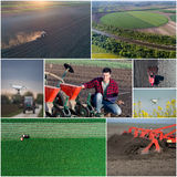 Collage of agricultural works shoot from drone Royalty Free Stock Photo
