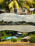 Collage of amazonia ,Peru my photos . Stock Photos