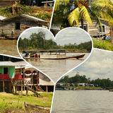 Collage of amazonia ,Peru my photos . Stock Photography