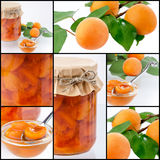 Collage with apricot jam in a jar covered paper with a spoon and. Collage with apricots on a branch and a jar of jam and sliced ​​fruit in jelly Stock Image