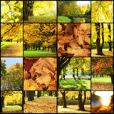Collage of autumn landscapes Royalty Free Stock Images