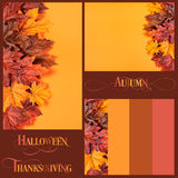 Collage of Autumn Leaves backgrounds, borders and text. Collage of Autumn Leaves on modern trend orange background for Fall, Thanksgiving, or Halloween holiday royalty free stock images
