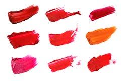 Collage av dekorativa skönhetsmedel färgar borsteläppstiftslaglängder på vit bakgrund Skönhet och makeupbegrepp fotografering för bildbyråer