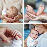 Collage av den lyckliga modern med den nyfödda sonen Fotografering för Bildbyråer