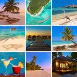 Collage av den Maldiverna stranden avbildar mina foto Arkivfoton