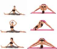 Collage av den unga härliga flickan som poserar yoga på vit Royaltyfri Bild