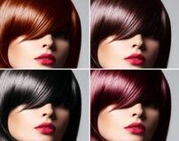 Collage av en härlig kvinna med rakt glansigt hår arkivbild