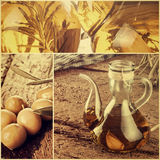 Collage av extra jungfrulig olivolja arkivbilder