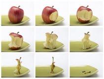Collage av följden av att äta ett rött äpple Royaltyfri Foto