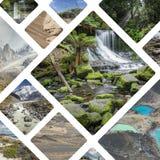 Collage av foto från Australi och Nya Zeeland - mina foto Arkivfoto