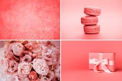 Collage av foto, i att bo korallfärger royaltyfri bild