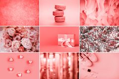 Collage av foto, i att bo korallfärger arkivbild