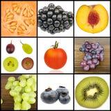 Collage av frukt i fyrkanter royaltyfri foto