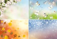 Collage av fyra säsonger Royaltyfri Fotografi