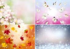 Collage av fyra säsonger Arkivbild