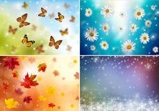 Collage av fyra säsonger Arkivfoto