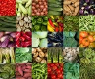 Collage av grönsaker fotografering för bildbyråer