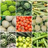 Collage av grönsaker, begreppet av hälsa och wellnessen Strikt vegetarian bantar arkivfoto