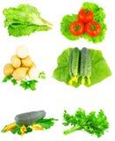 Collage av grönsaker på vit bakgrund. Arkivbilder